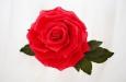 """""""Роза фаберже"""". Фото 4."""