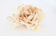 Композиция из чайных роз. Фото 2.