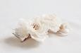 Белые розы на гребешке. Фото 1.