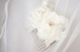Белые розы на гребешке. Фото 2.