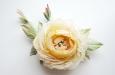 Кремовая английская роза. Фото 1.