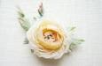 Кремовая английская роза. Фото 2.