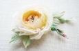 Кремовая английская роза. Фото 3.
