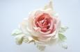 """Ланком"" роза. Фото 2."