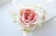 """Ланком"" роза. Фото 3."