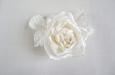 """""""Ланком"""" роза белая. Фото 3."""