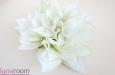 """""""Олди"""" цветок лотоса. Фото 1."""