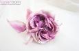"""""""Беатрис"""" роза. Фото 1."""