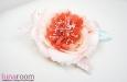 Роза из шелка, корраловый. Фото 2.