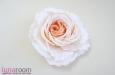 """""""Жениаль"""" роза, шелк, чайная. Фото 2."""