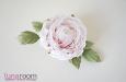"""""""Мишель"""" роза. Фото 2."""