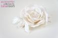 """""""Carla"""" роза, заколка-брошь. Фото 2."""